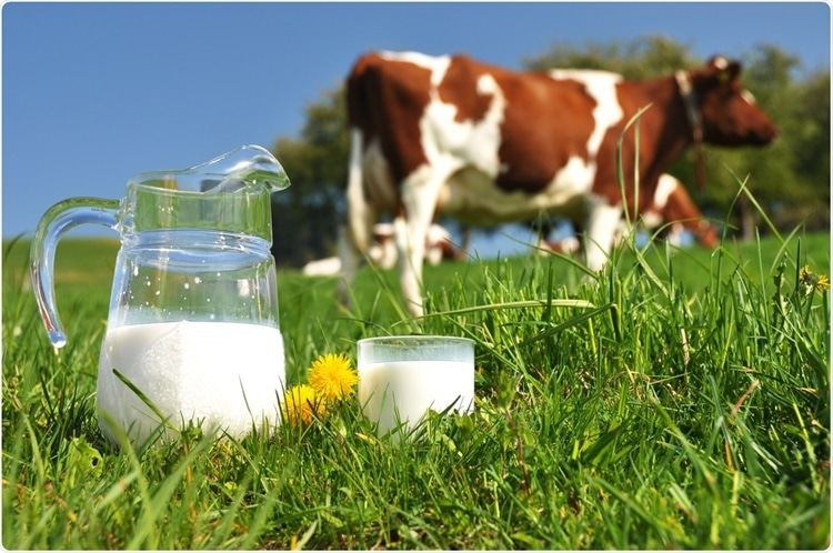 Alternatives to Cow's Milk for Children